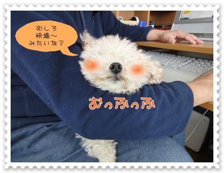 b9_20120208203814.jpg