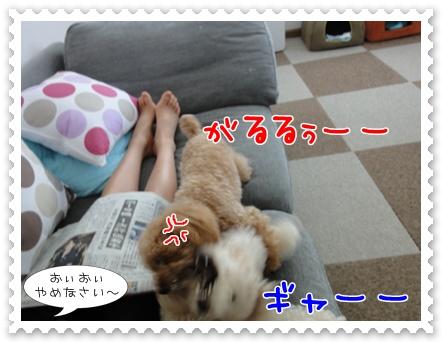 c10_20110807182712.jpg