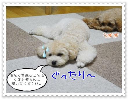 c10_20111018203242.jpg