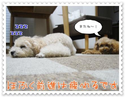 c11_20111018203241.jpg