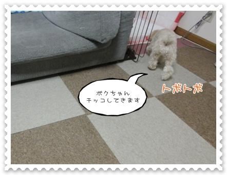 c16_20120131152009.jpg