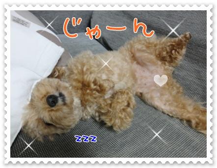 c1_20111004195859.jpg