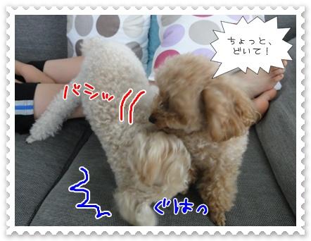c2_20110807182636.jpg