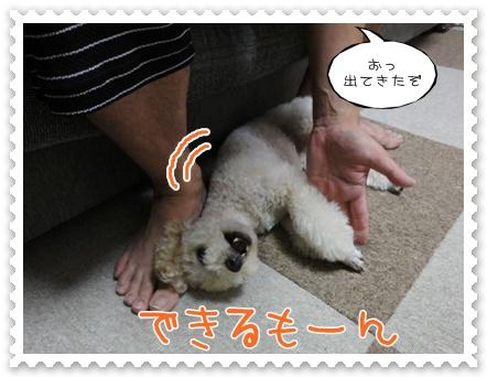c9_20110905231302.jpg