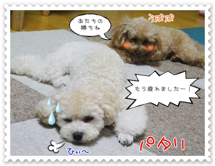 c9_20111018203244.jpg