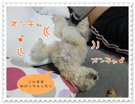 d10_20111002121726.jpg