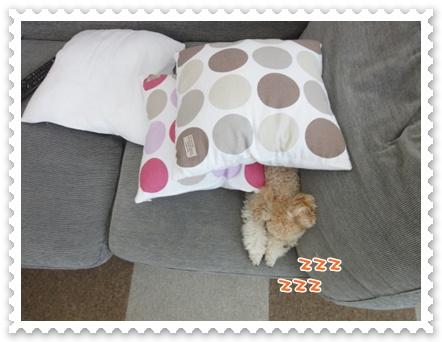 d5_20111027152741.jpg