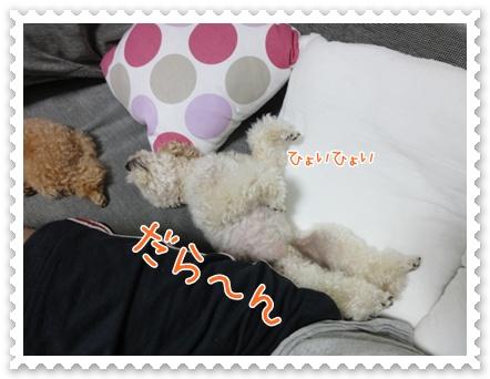 d7_20111002121727.jpg