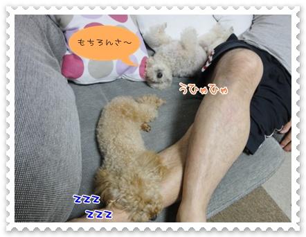 d8_20111002121727.jpg