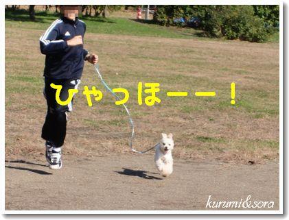 k11_20101023182758.jpg
