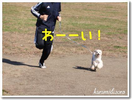 k12_20101023182758.jpg