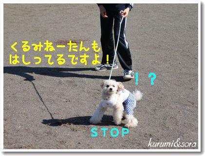 k13_20101023182853.jpg