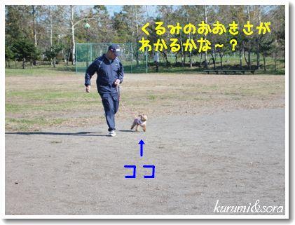 k14_20101023182853.jpg