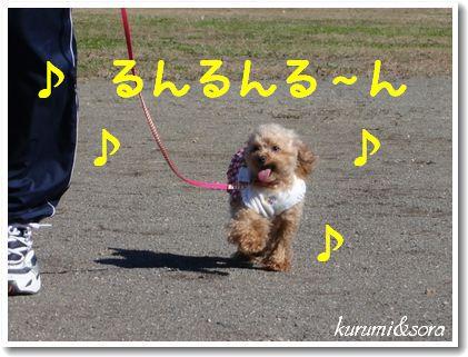 k16_20101023182852.jpg