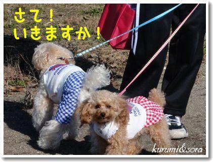 k2_20101023182713.jpg