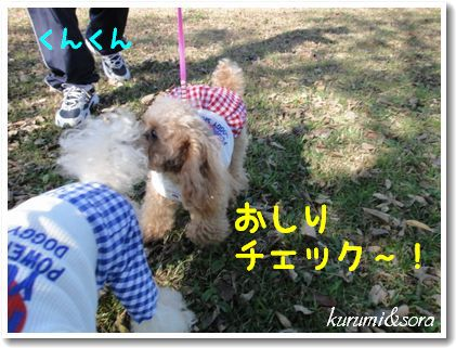 k4_20101023182712.jpg