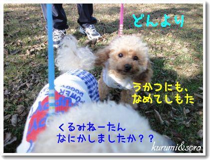 k8_20101023182800.jpg