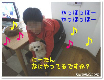 n4_20101031204055.jpg