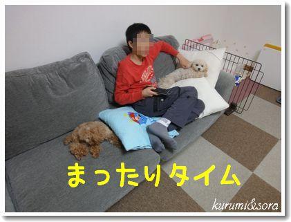 n7_20101031204137.jpg