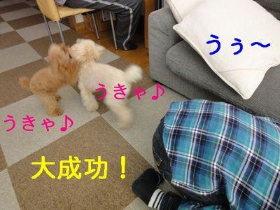 sofa13.jpg