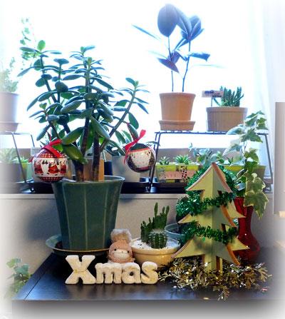 11 クリスマス