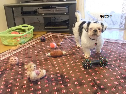 おもちゃ引っぱり出しすぎやから?