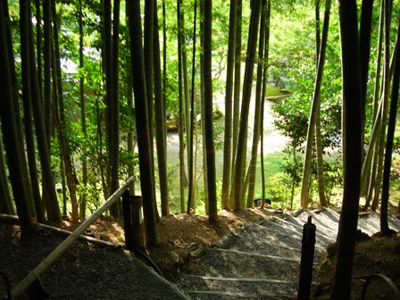 DSCN0459高台寺