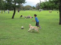 soccerga.jpg