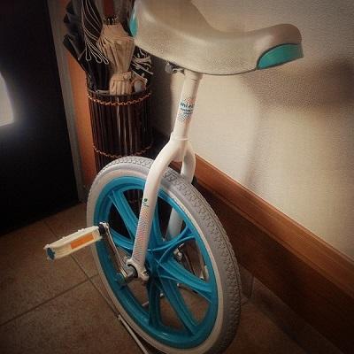 IMG_0539 一輪車
