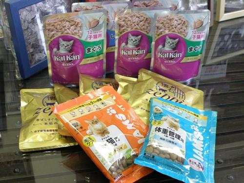 20110607川北活子