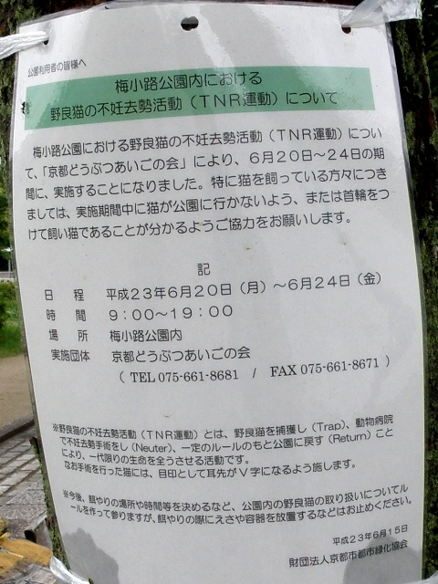 20110620 (103)
