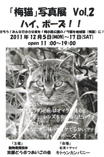 CCF20111106_00004.jpg