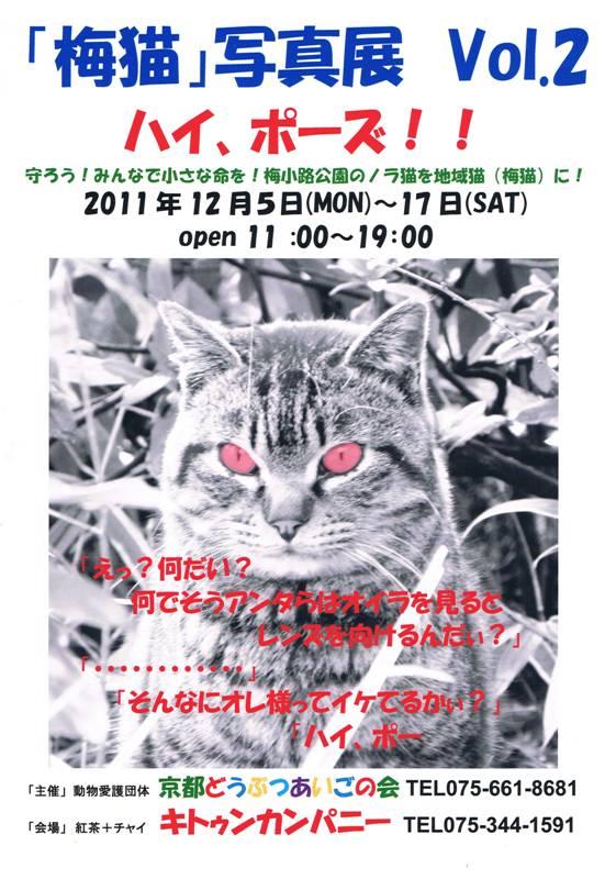 CCF20111127_00000.jpg