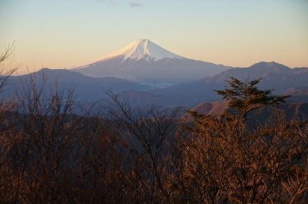 20121222戸倉・三頭山6