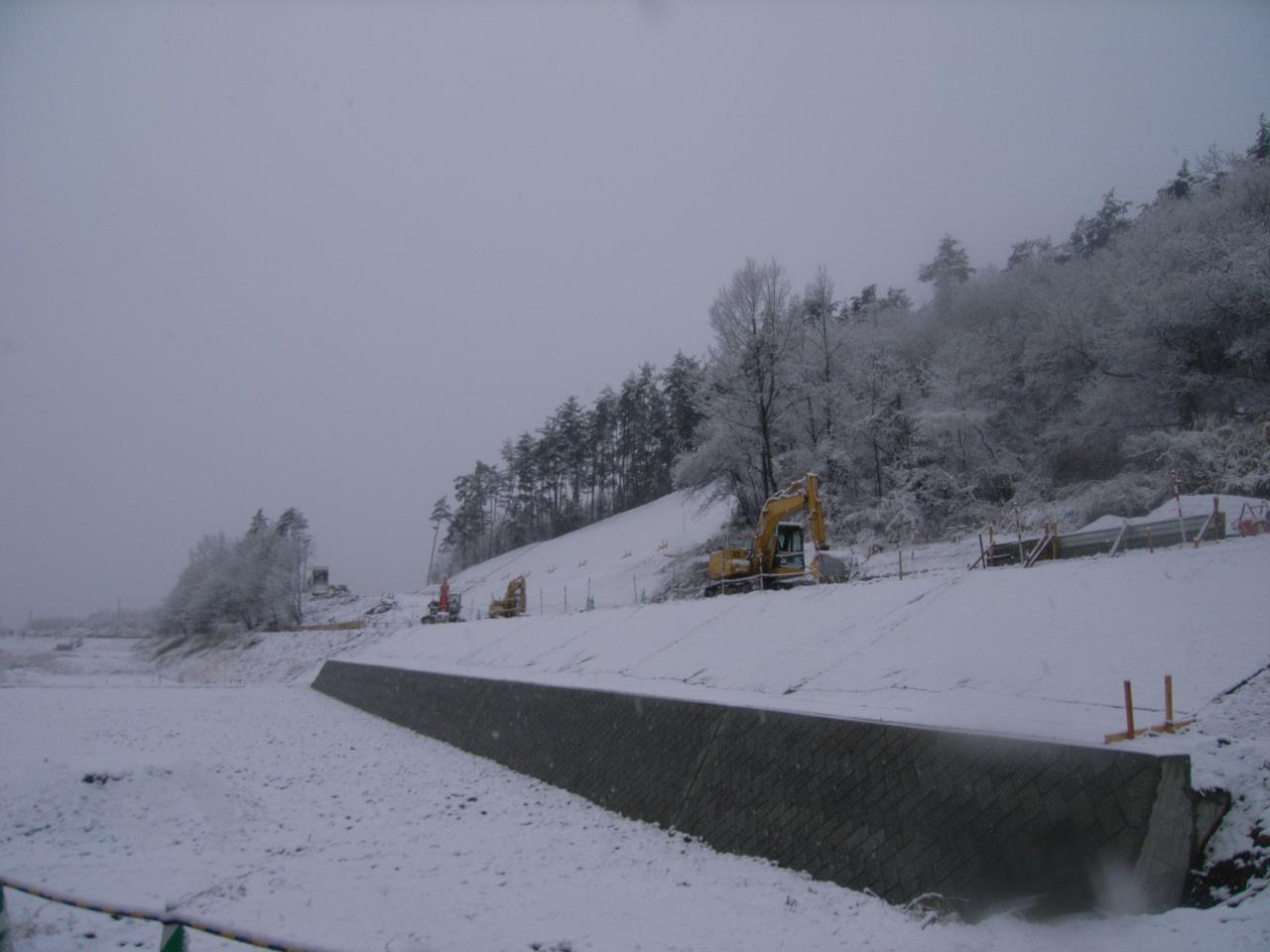 双葉進捗(1月雪)