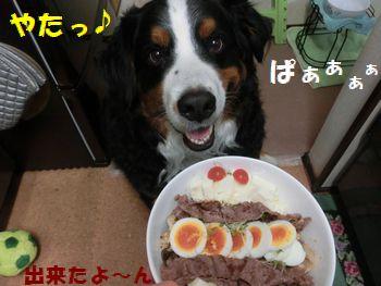 ゴハン完成なの~??