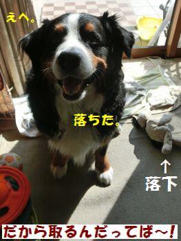 ぬいぐるみキャッチむずかし~!