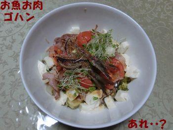 ゴハンはお魚とお肉なんだよ~!