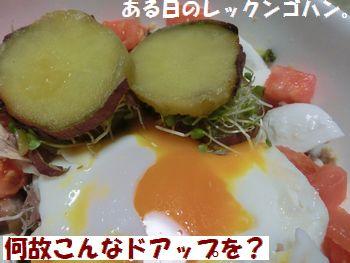 ゴハンのドアップ~!