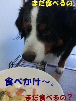 まだ食べてんだもん!