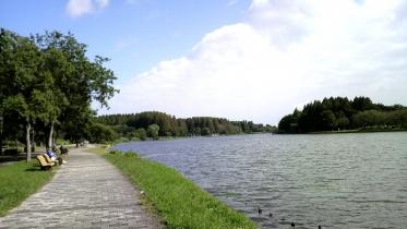 水元公園1-06