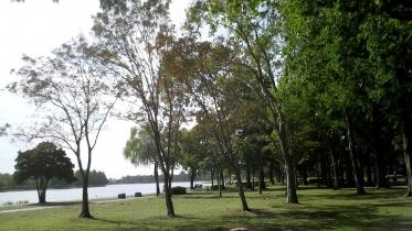 水元公園1-08