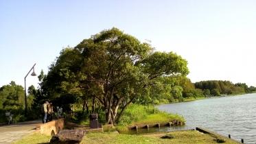 水元公園1-09