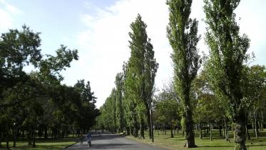 水元公園1-12