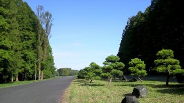 水元公園1-23
