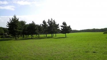 水元公園1-25