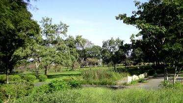 水元公園2-04
