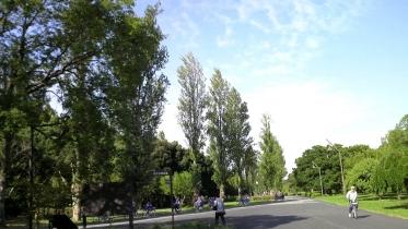水元公園2-15