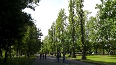 水元公園2-16