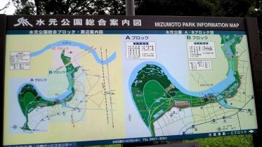 水元公園2-19